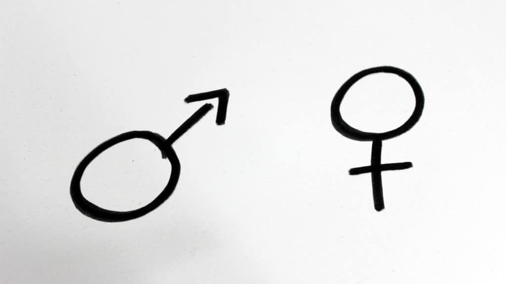 Schwangerschaft Geschlecht