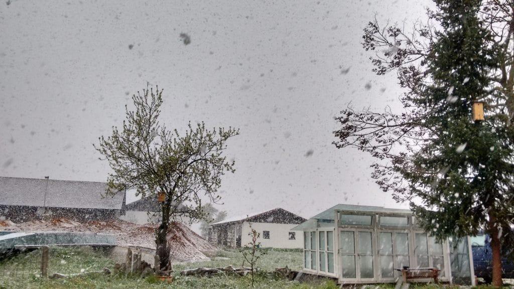 ...und im nächsten Moment schneit es. Insgesamt ist es bitterkalt.