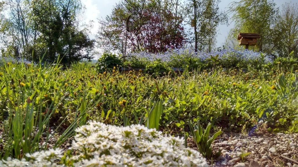 Das April-Wetter macht nämlich seinem Namen alle Ehre: im einen Moment scheint die Sonne und es ist wunderschön, im Garten zu sein...